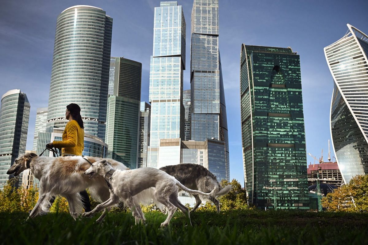 A woman walks her dogs in front of the buildings of Moscow's International Business Centre in Moscow on Sept 22, 2020. PHOTO: AFP