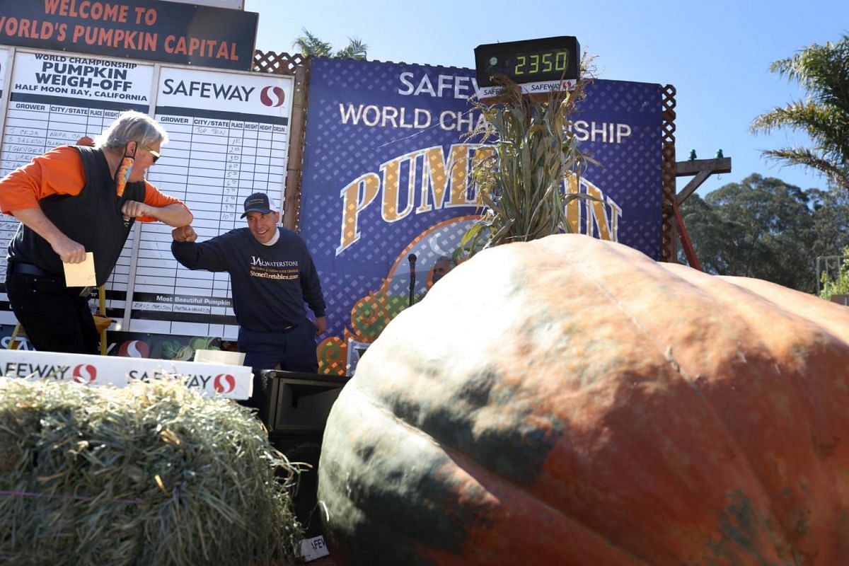 Travis Gienger (right) stands next to his 1,066kg pumpkin during the Safeway World Championship Pumpkin Weigh-Off in Half Moon Bay, California, on Oct 12, 2020.