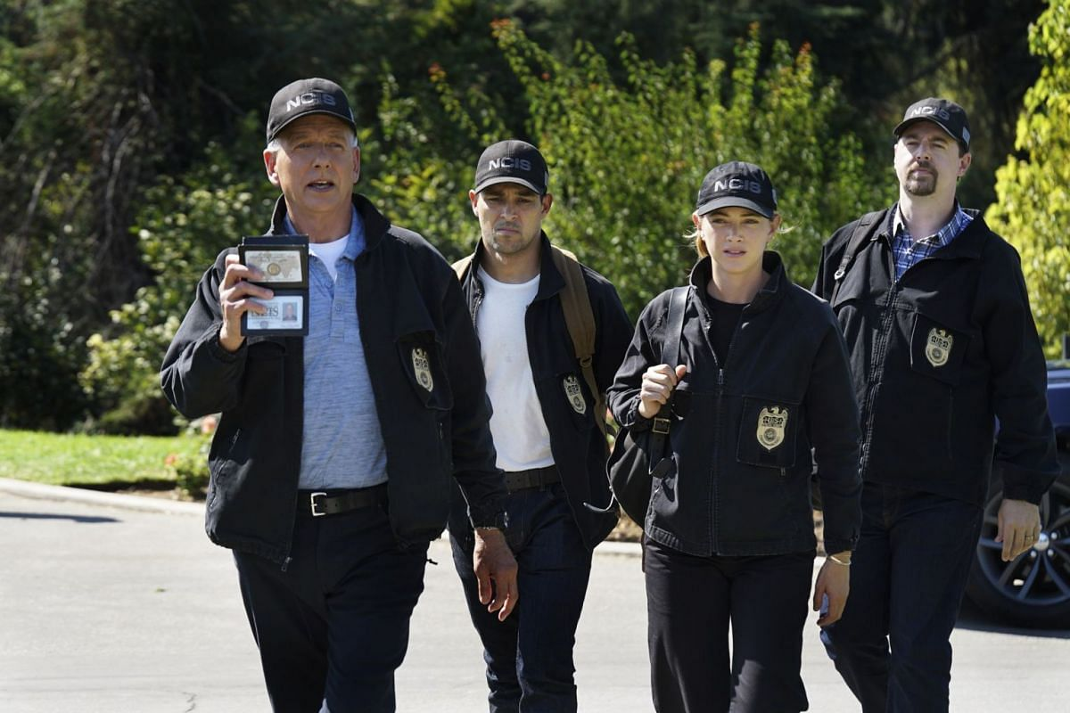 Mark Harmon (left) heads a team of special agents from the navy's law enforcement unit in crime drama NCIS, which debuted in 2003,  while animated comedy Family Guy has been running since 1999.