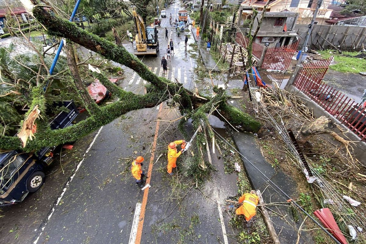 Government workers clear a toppled tree in the typhoon-hit town of Tigaon, Camarines Sur, Nov 1, 2020.