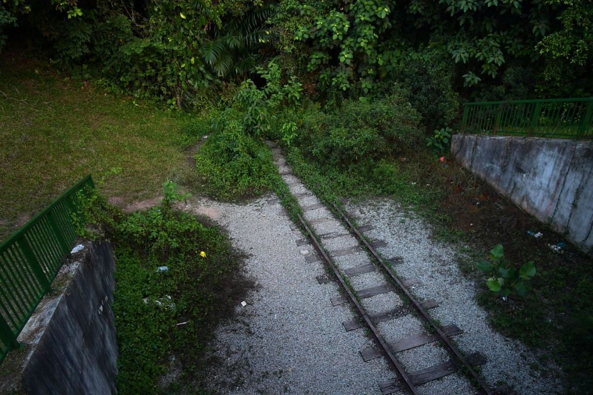 A photo released on Nov 19, 2020, shows abandoned railway tracks leading into the forest, seen below Clementi Road, opposite Maju Camp, on Oct 21, 2020. The train tracks were once part of the Jurong Railway Line, a 14km railway that opened in 1965, a