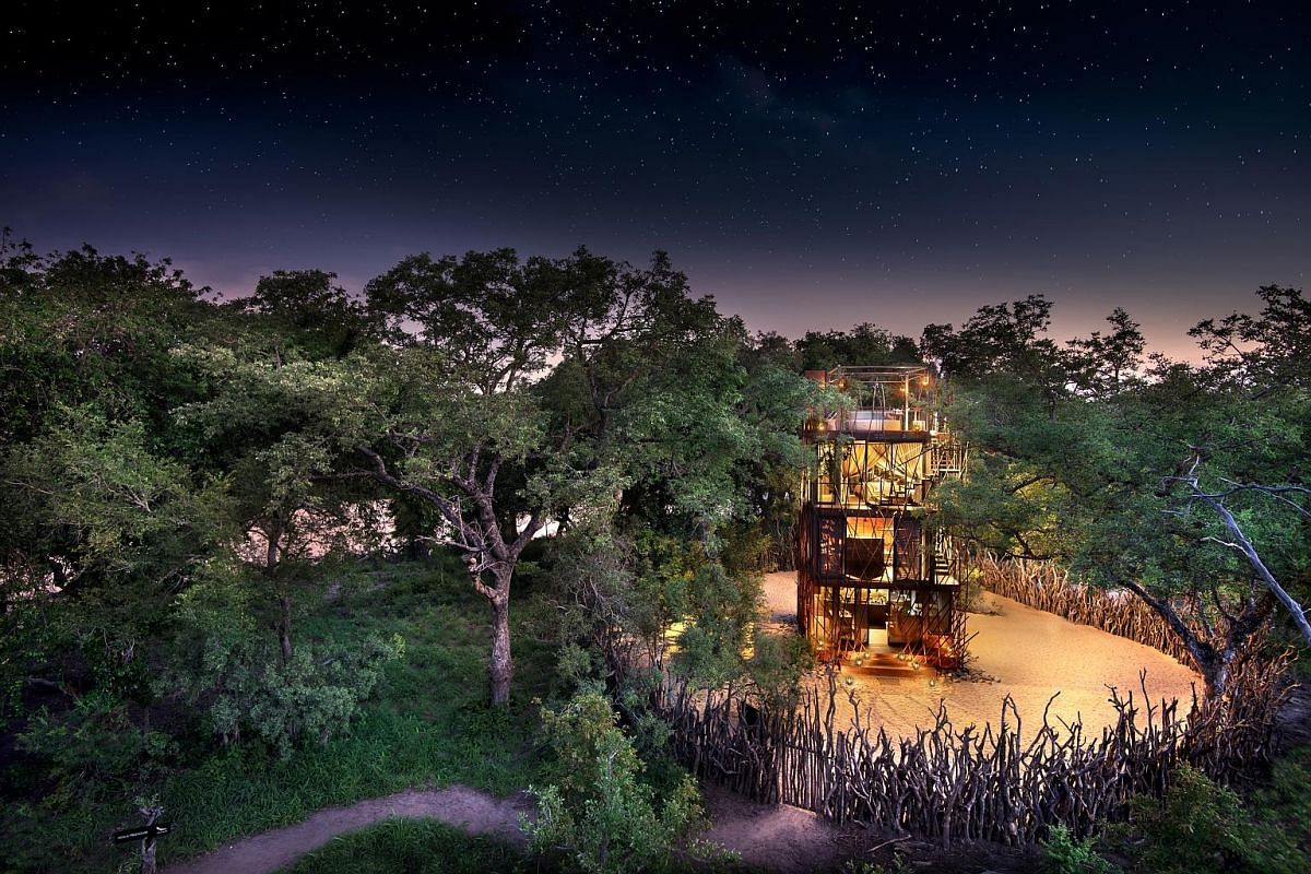 Travellers will be gravitating towards destinations with open spaces, fresh air and nature, such as the Ngala Treehouse (above) in South Africa, Patagonia (left) in South America and Lucerne (below) in Switzerland. Friends and families may in the fut