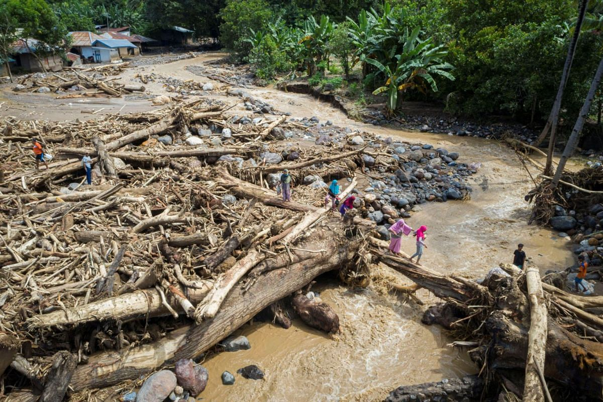 An aerial picture shows people walking through a pile of tree trunks after flash floods triggered by tropical cyclone Seroja in East Flores, East Nusa Tenggara province, Indonesia April 7, 2021, in this photo taken by Antara Foto.