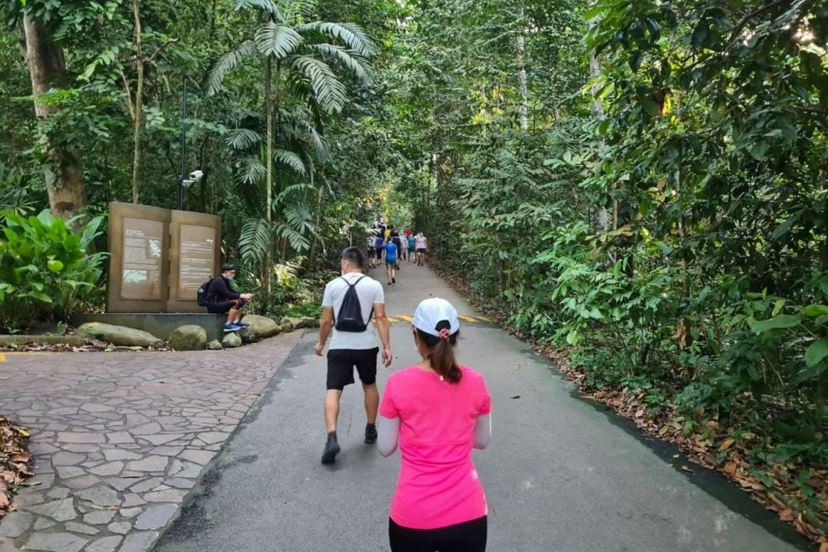 People hiking at Bukit Timah Nature Reserve on May 16, 2021.