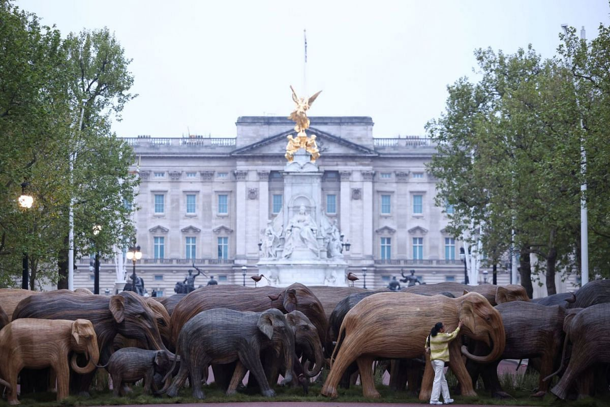 Natasha Hibbert poses alongside an exhibition of life-size elephant sculptures, part of the CoExistence campaign organised by the Elephant Family Trust, on The Mall in London, Britain, May 15, 2021.