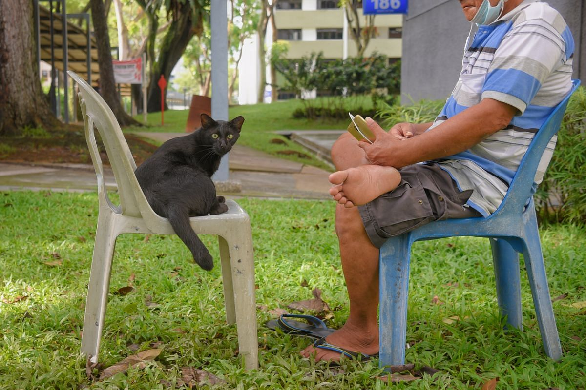 A man relaxing at an HDB estate in Boon Lay on May 18 is joined by the neighbourhood stray cat.