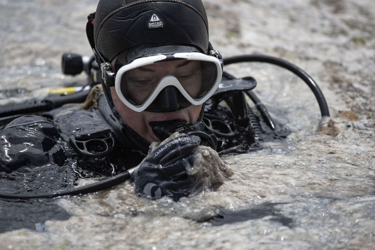 A diver for the Ministry of Environment and Urbanization operates in the Marmara sea covered by sea snot in Istanbul, Turkey, June 8, 2021.