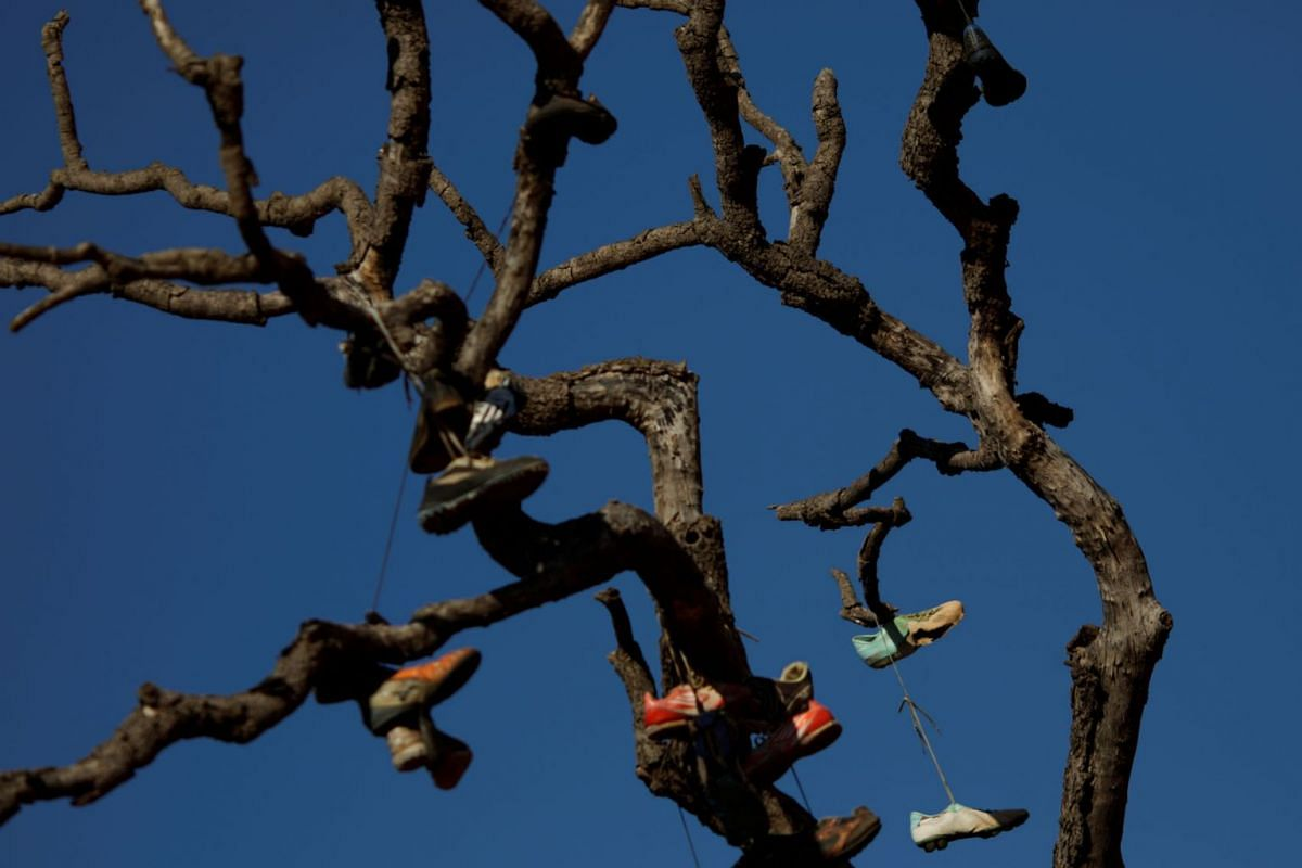 Shoes hang from a tree at the neighbourhood of Paranoa in Brasilia, Brazil, on June 8, 2021.