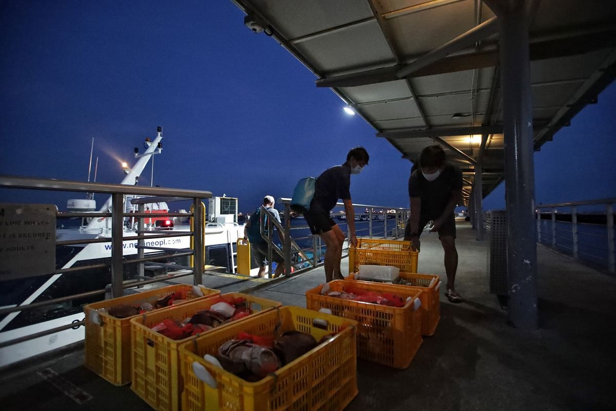 Mr Khoo (with bag) and fellow diver Gideon Liew moving a crate of artefacts, while Dr Michael Flecker is heading back to the vessel. The artefacts are brought to a processing and storage facility at the end of the day.