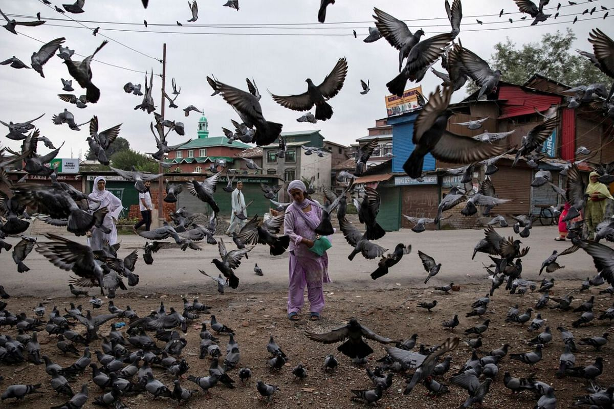 A Kashmiri woman feeding pigeons during restrictions after the scrapping of the special constitutional status for Kashmir by the Indian government, in Srinagar, on Aug 11, 2019.