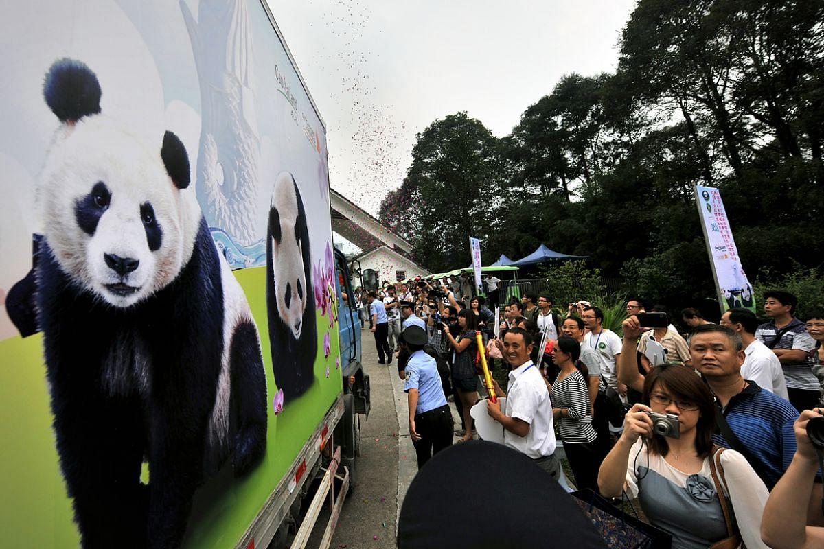 People bidding farewell to the truck carrying Jia Jia and Kai Kai leaving the panda base at Ya'an Bifeng Gorge for China's Chengdu Shuangliu International Airport on Sept 5, 2012.