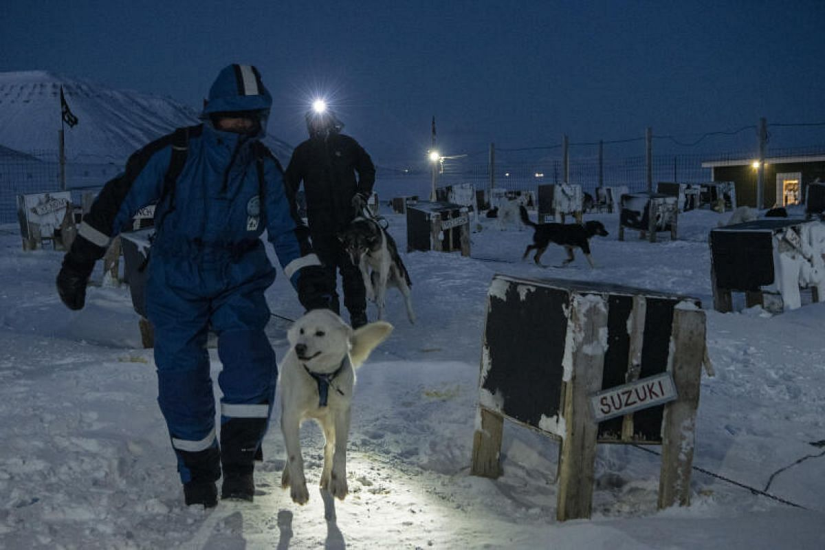 Before the Covid-19 pandemic, tourists flocked to Longyearbyen for the Northern Lights and activities such as dog sledding, and glacier hiking.