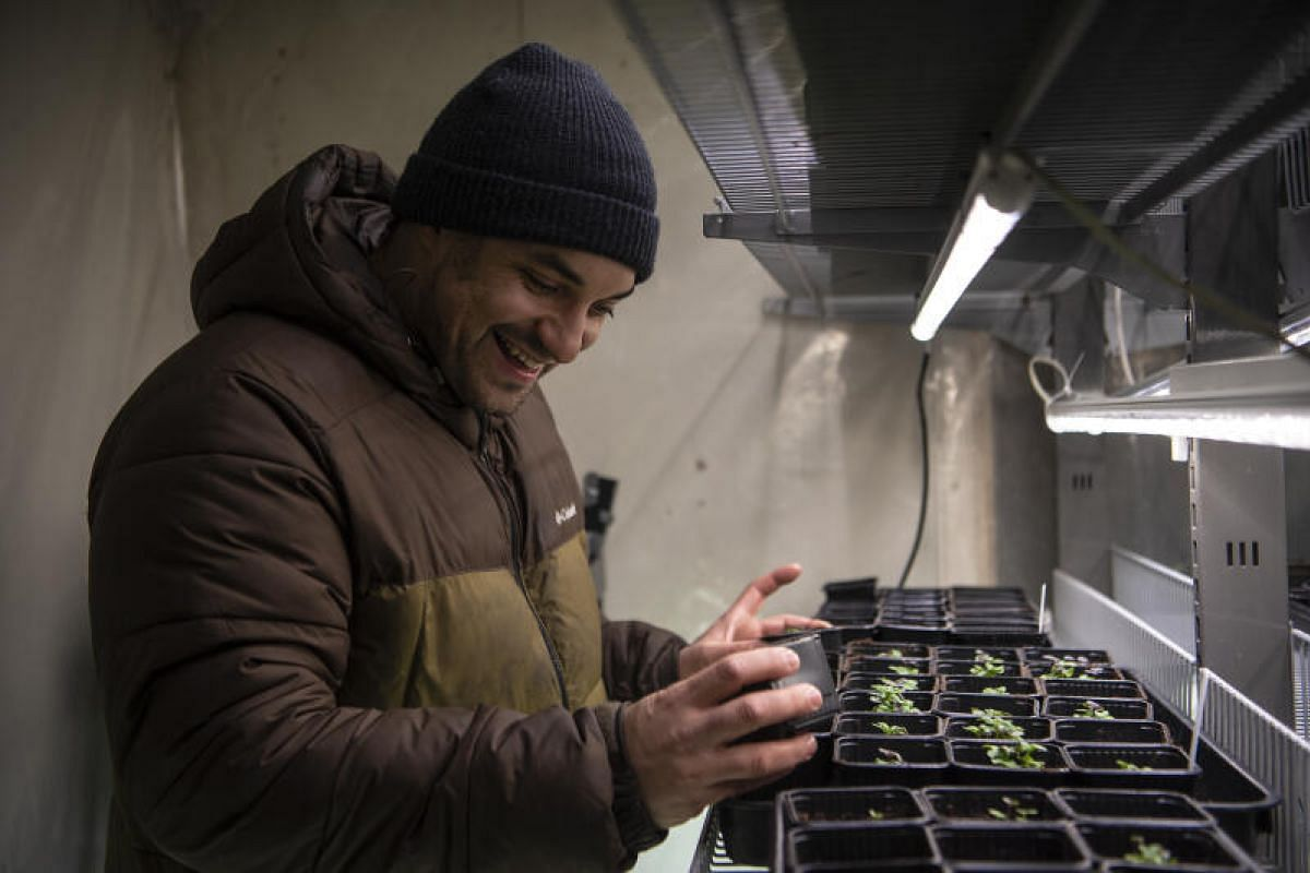 Despite the harsh weather conditions in the region, the chef-turned-farmer is able to grow a steady supply of greens – such as watercress and daikon radish – all year round, using a greenhouse dome during the summer months and climate-controlled