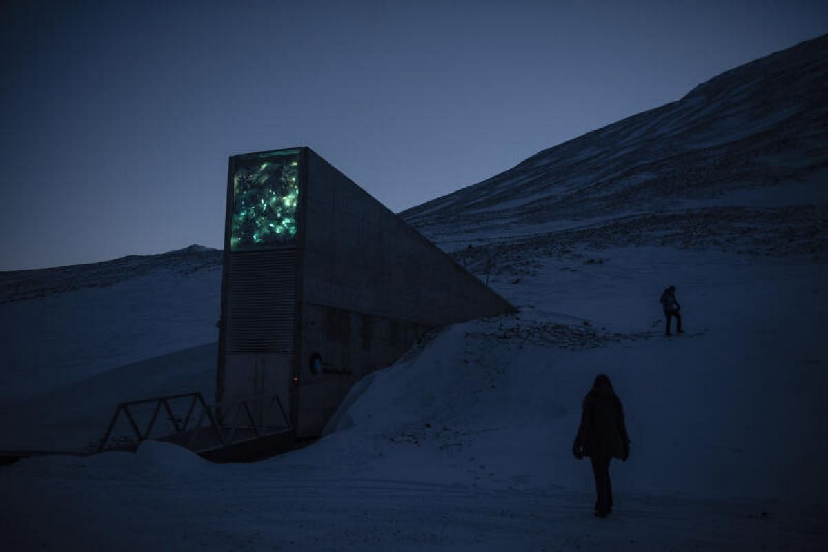 It was built as an impregnable fortress to safeguard the most precious seeds known to humanity – an insurance for the world's food supply. But the permafrost that was supposed to protect the Svalbard Global Seed Vault from natural and man-made di