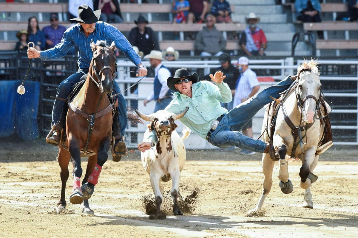 A cowboy seen in a steer wrestling competition, in a stadium, during the Western Festival in St-Tite, Quebec, Canada, September 12, 2021.