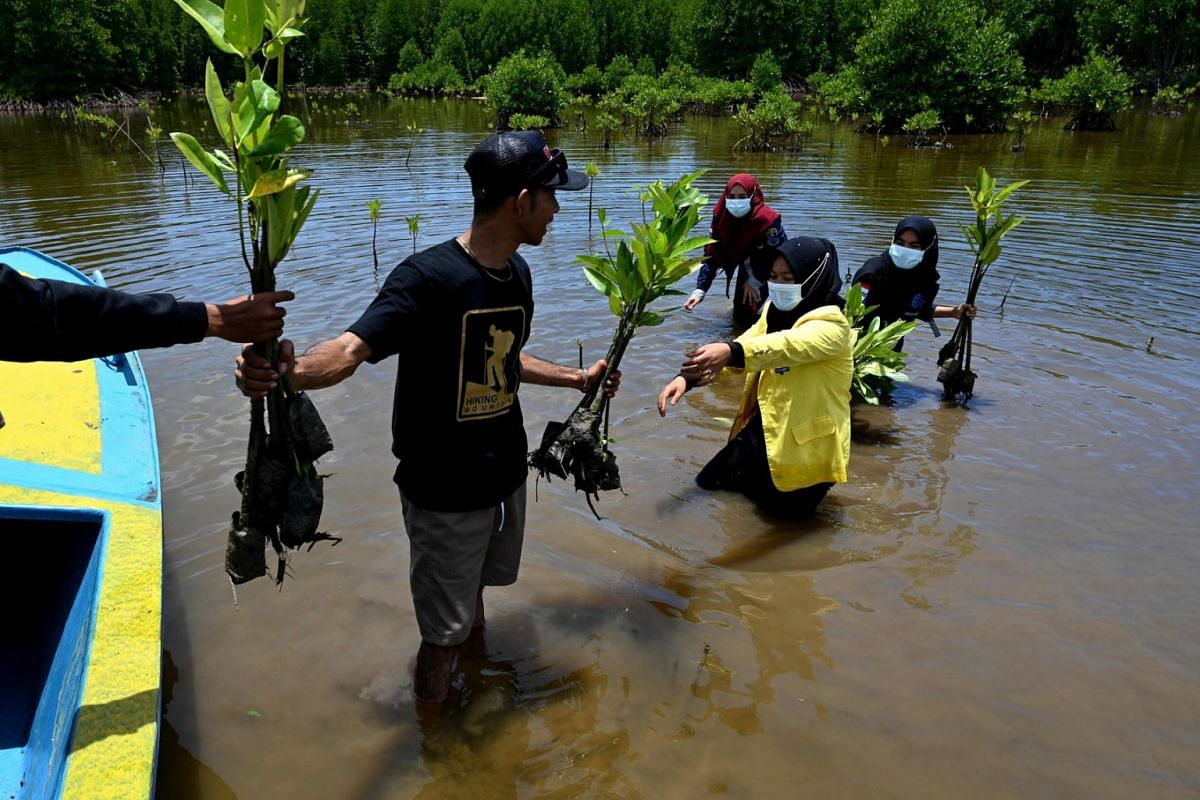 Students prepare to plant mangroves in Calang, Indonesia's Aceh province on September 15, 2021.