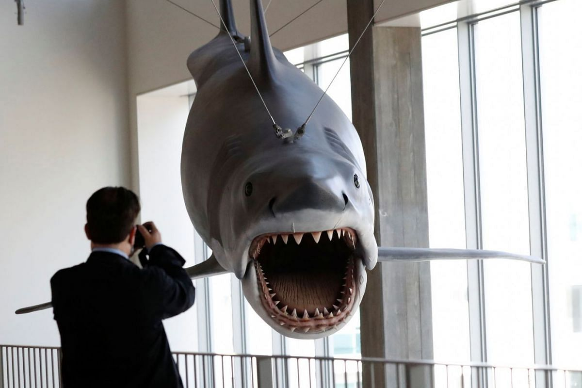 """A member of the media shoots video of the only surviving full-size scale model cast from the original mold used on """"Jaws"""" during a media preview ahead of the opening of the Academy Museum of Motion Pictures in Los Angeles, California, U.S., September"""