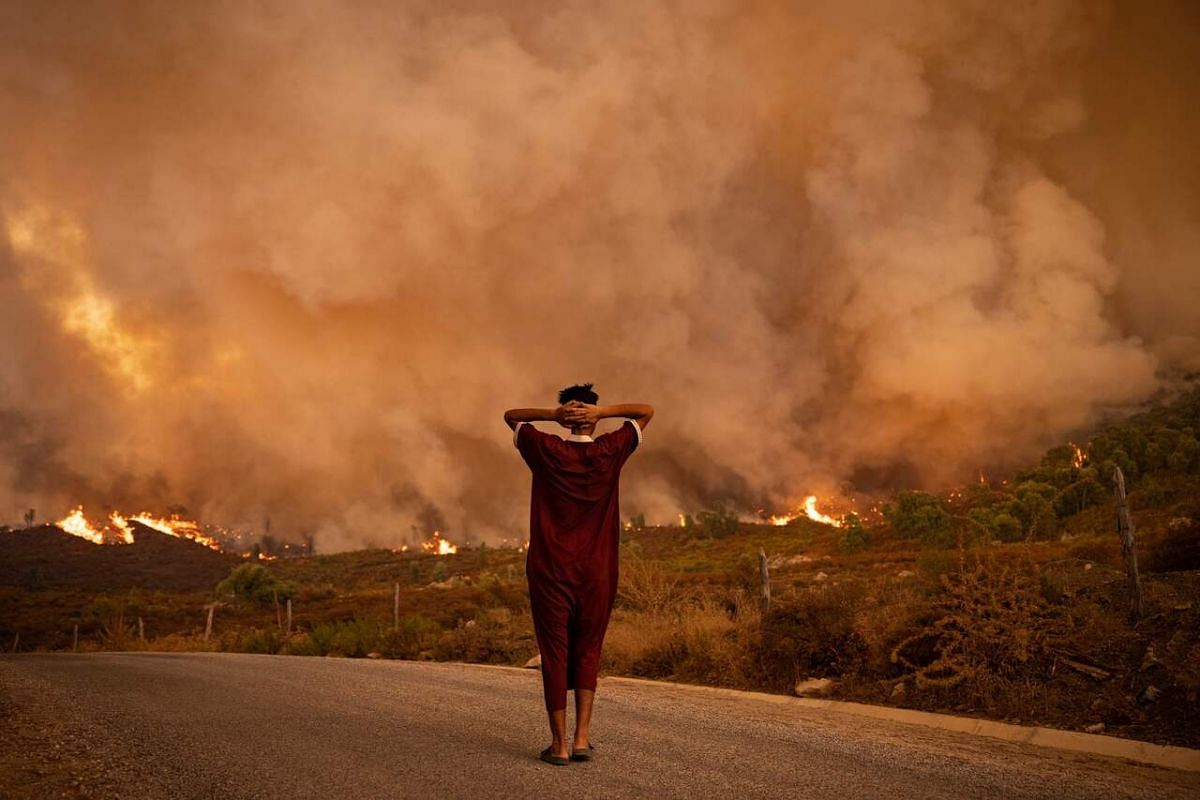 A woman looks at wildfires tearing through a forest in the region of Chefchaouen in northern Morocco on Aug 15, 2021.