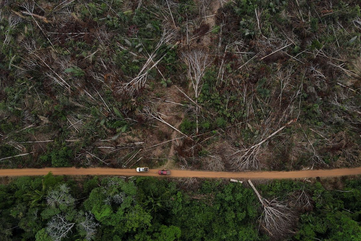 An aerial view shows a deforested plot of Brazilian Amazon rainforest, in Apui, Amazonas state, Brazil, on Sept 4, 2021.