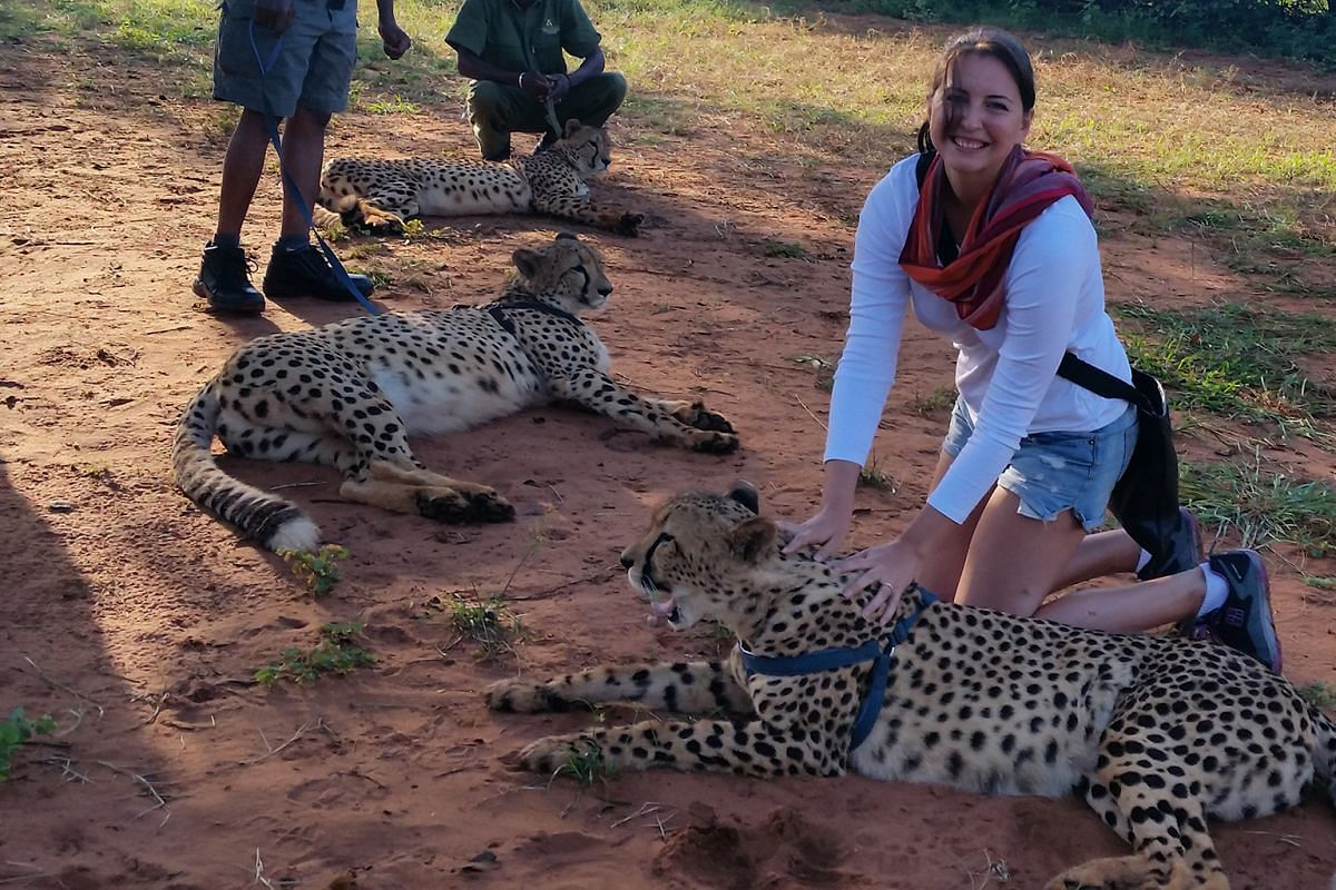 A microlight flight over Victoria Falls affords a 360-degree view of the landscape from 250m in the sky. Right: Life writer Lydia Vasko gets up close with the cheetahs at Mukuni Big 5 Safaris. Below: Zebras roam freely in the grounds of The Royal Liv
