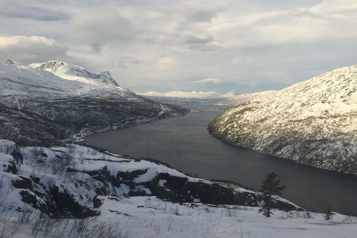 On a dog-sled ride through a snow-covered forest. The magnificent view from high above the Trollfjord. The Norwegian towns of Svolvaer (top) and Trondheim (above).