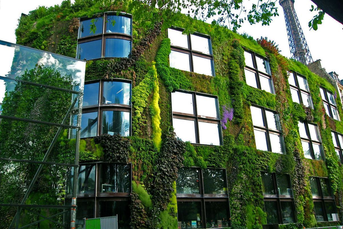 The vertical gardens Dr Blanc (left) has worked on include the one at the Quai Branly Museum (far left) in Paris, France; and another at One Central Park in Sydney (above). Both buildings are designed by architect Jean Nouvel. Dr Patrick Blanc's home