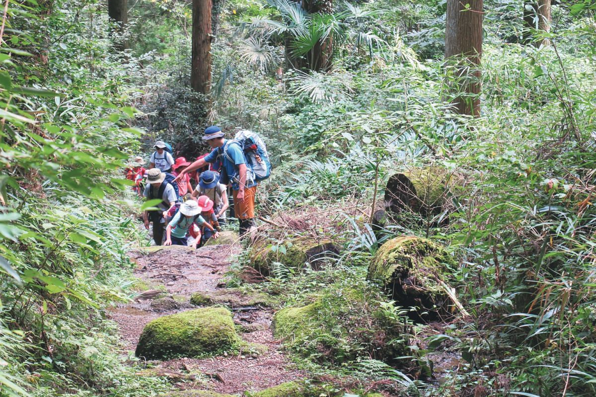 Hikers climbing Hokkaido's Mount Kuro, now coloured with the red and yellow leaves of mountain plants. The autumn colours will last till next week on the highest third of the mountain and a bit later in the lower regions, according to local business