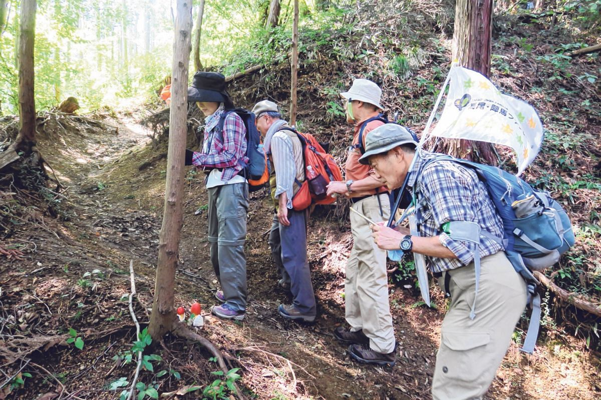 "Mr Yoshiaki Nagayama (third from left) and other hikers from the Mount Takao and Mount Jinba Fan Club observing an agaric mushroom fungus, ""tamagotake"", during a hike on Sekirozan."
